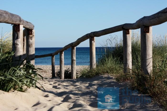 spiaggia-punta-prosciutto-02