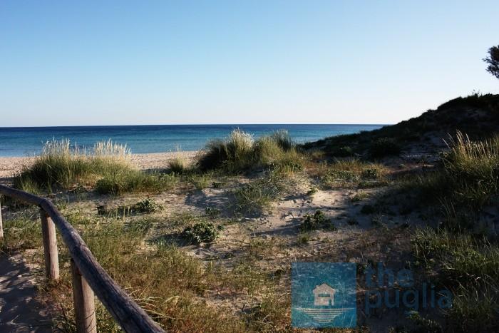spiaggia-punta-prosciutto-03