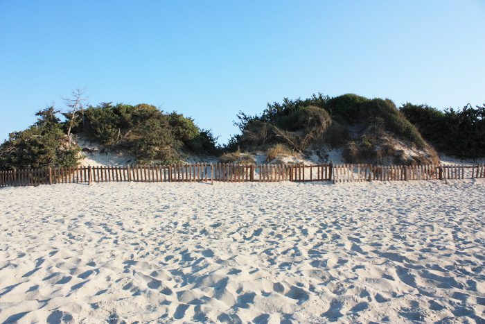 dune-torre-lapillo
