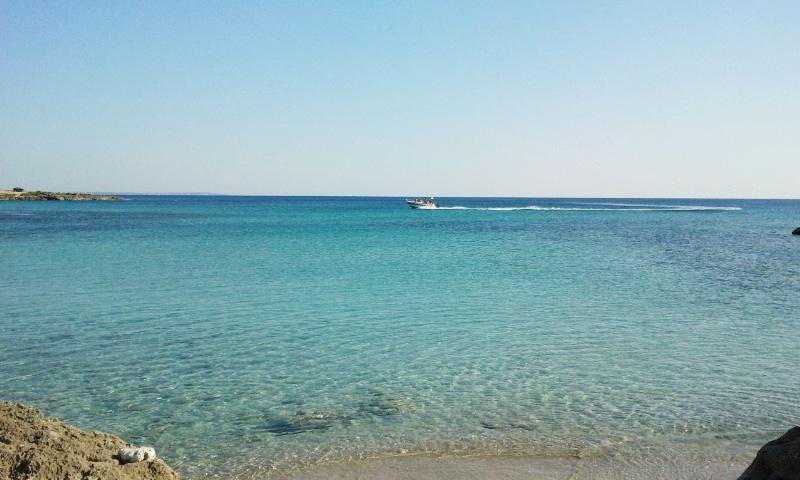 barca-torre-castiglione