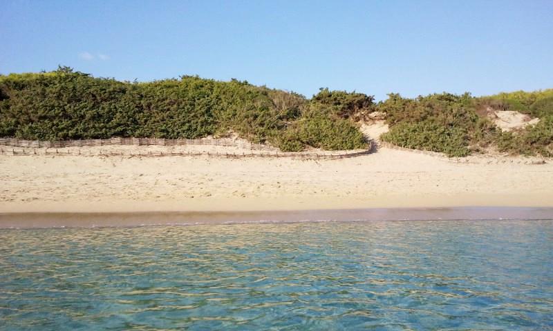 punta-prosciutto-dune