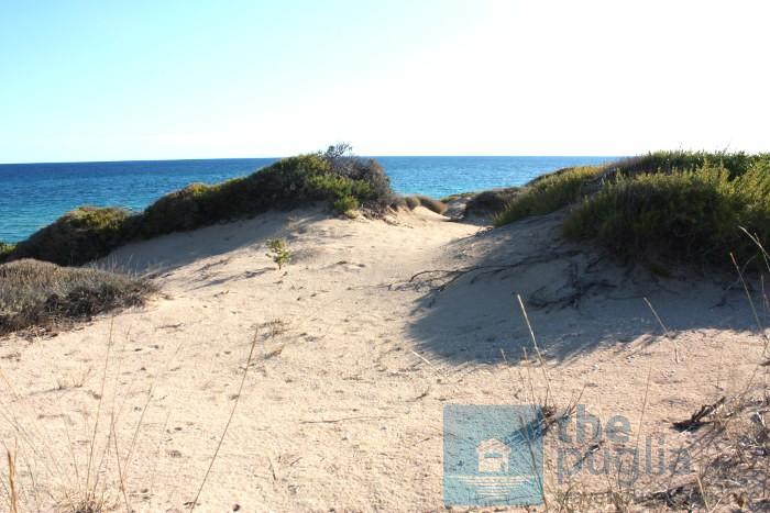 dune-campomarino-mirante-salento