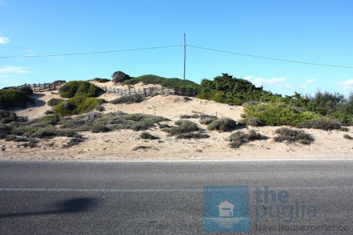 salento-litoranea-dune-spiaggia-01
