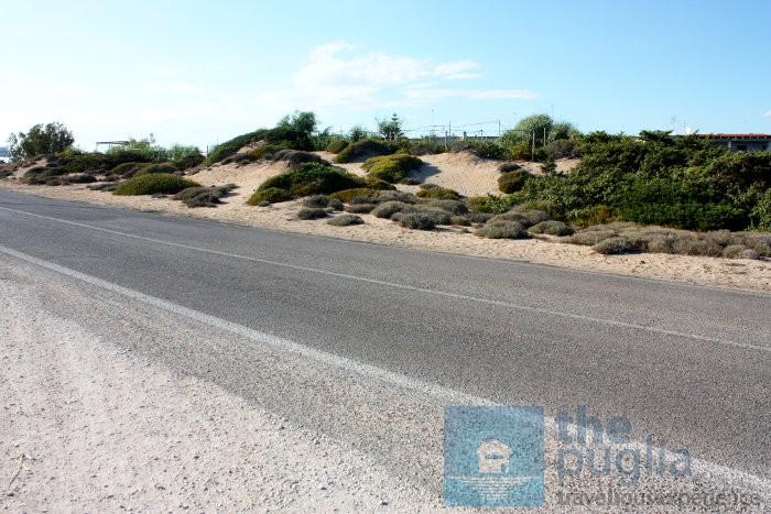 salento-litoranea-dune-spiaggia-03