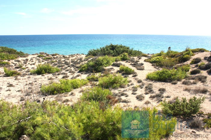 spiaggia-dune-salento-02