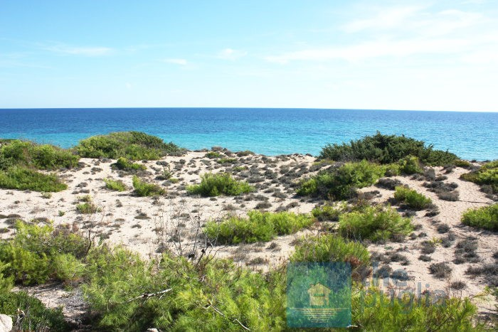 spiaggia-dune-salento-03