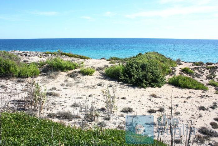 spiaggia-dune-salento-04