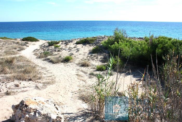 spiaggia-dune-salento-05