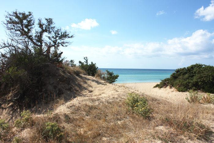 spiaggia-dune-san-pietro-in-bevagna