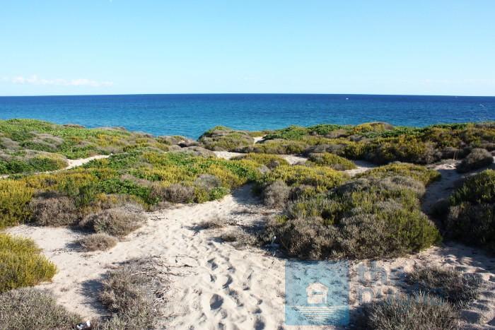 spiaggia-salento-monaco-mirante-02