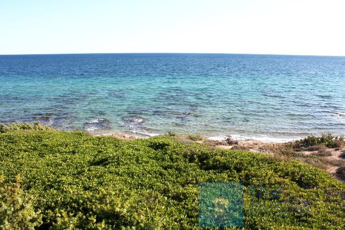 spiaggia-salento-monaco-mirante-05