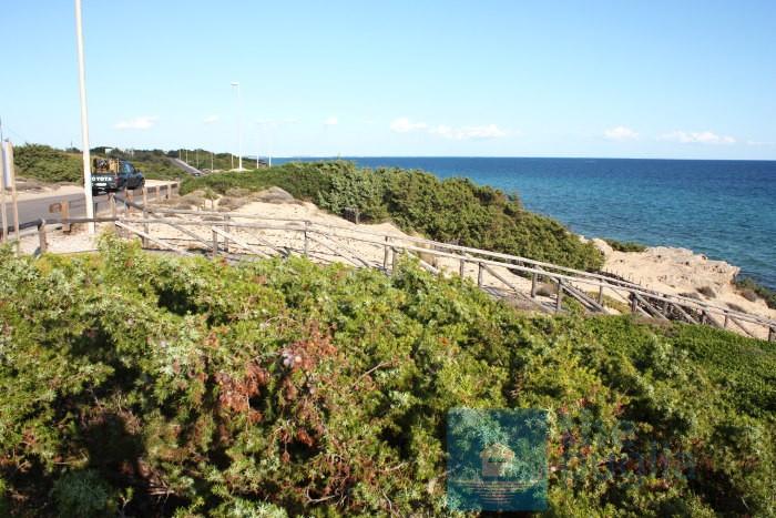 spiaggia-salento-monaco-mirante-06