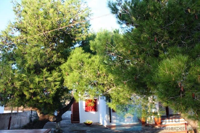 villa-giardino-vendita-punta-prosciutto