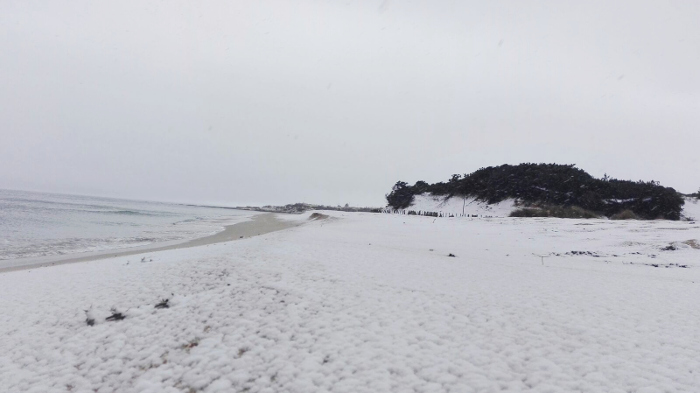 spiaggia-porto-cesareo-inverno