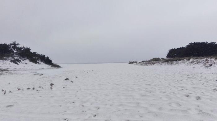 spiaggia-porto-cesareo-neve