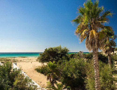 Punta Prosciutto in Puglia, tutto ciò che devi sapere