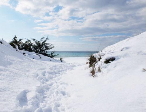 La neve sulle spiagge del Salento a Porto Cesareo