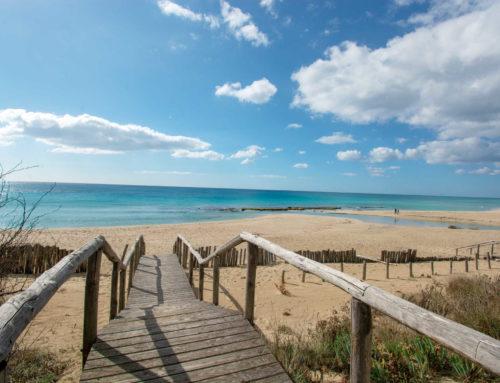Una spiagga del Salento da scoprire: la spiaggia di Specchiarica