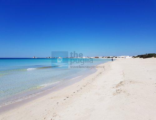 Come si va in spiaggia a Porto Cesareo e Gallipoli quest'anno?