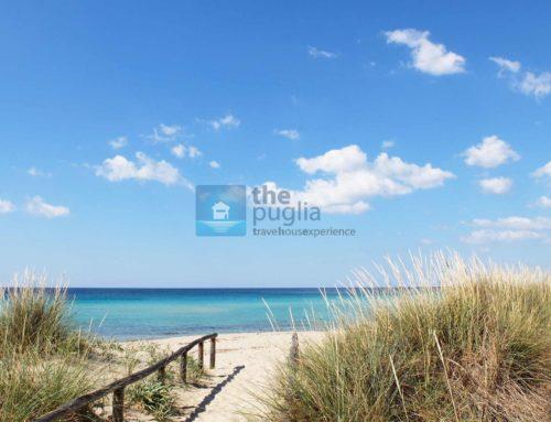 Hotel a Punta Prosciutto: dove ne trovo uno sulla spiaggia?
